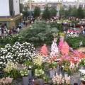 Euroflora 2006