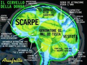 Il cervello delle donne